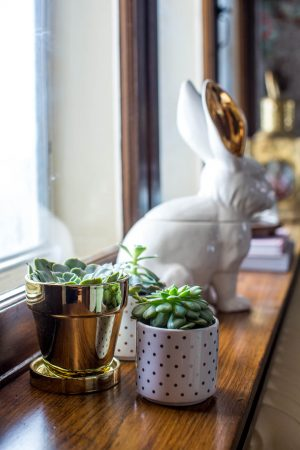 My Dining Room: Woodland Animals and Gold Accents