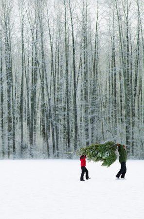 Noël Local: Une piasse c't'une piasse