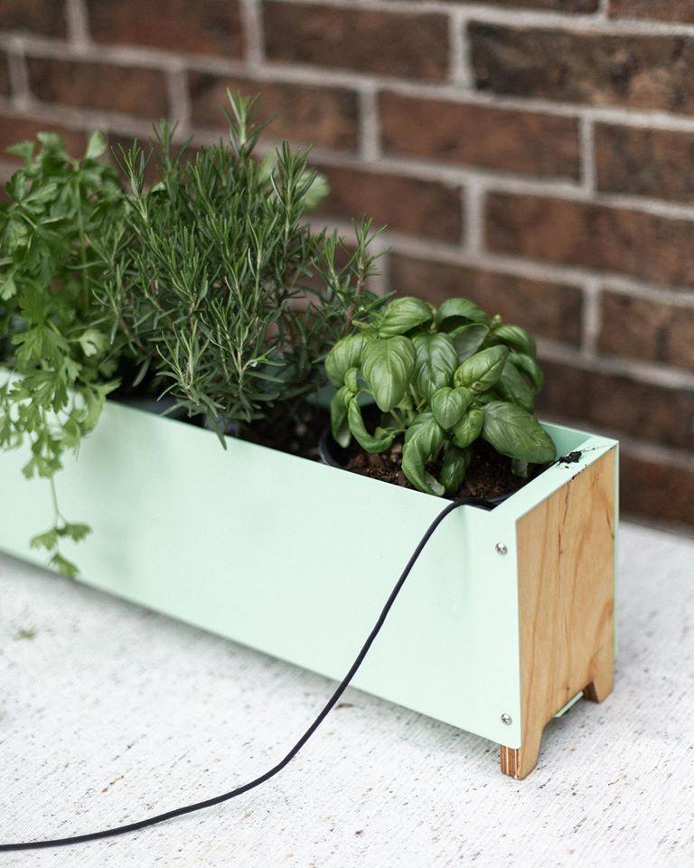 Butine, jardinière, montréal