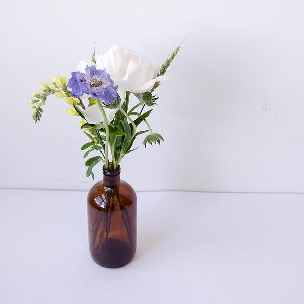 jungle fleur, fleurs, bouquets, montréal, fleuriste