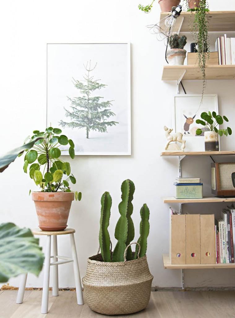 7 astuces pour arr ter de tuer vos plantes interior design ideas home decor blog. Black Bedroom Furniture Sets. Home Design Ideas